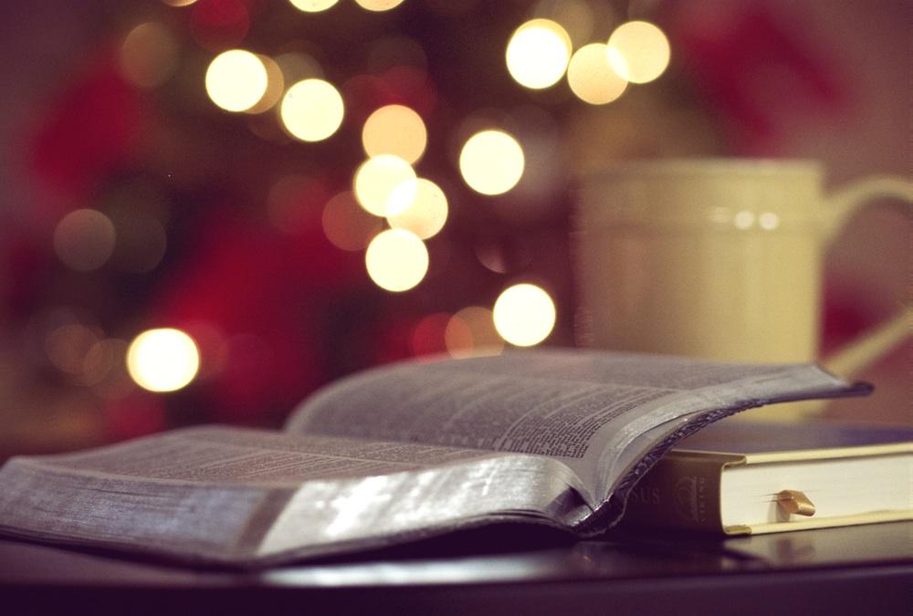 bible-coffee-tree